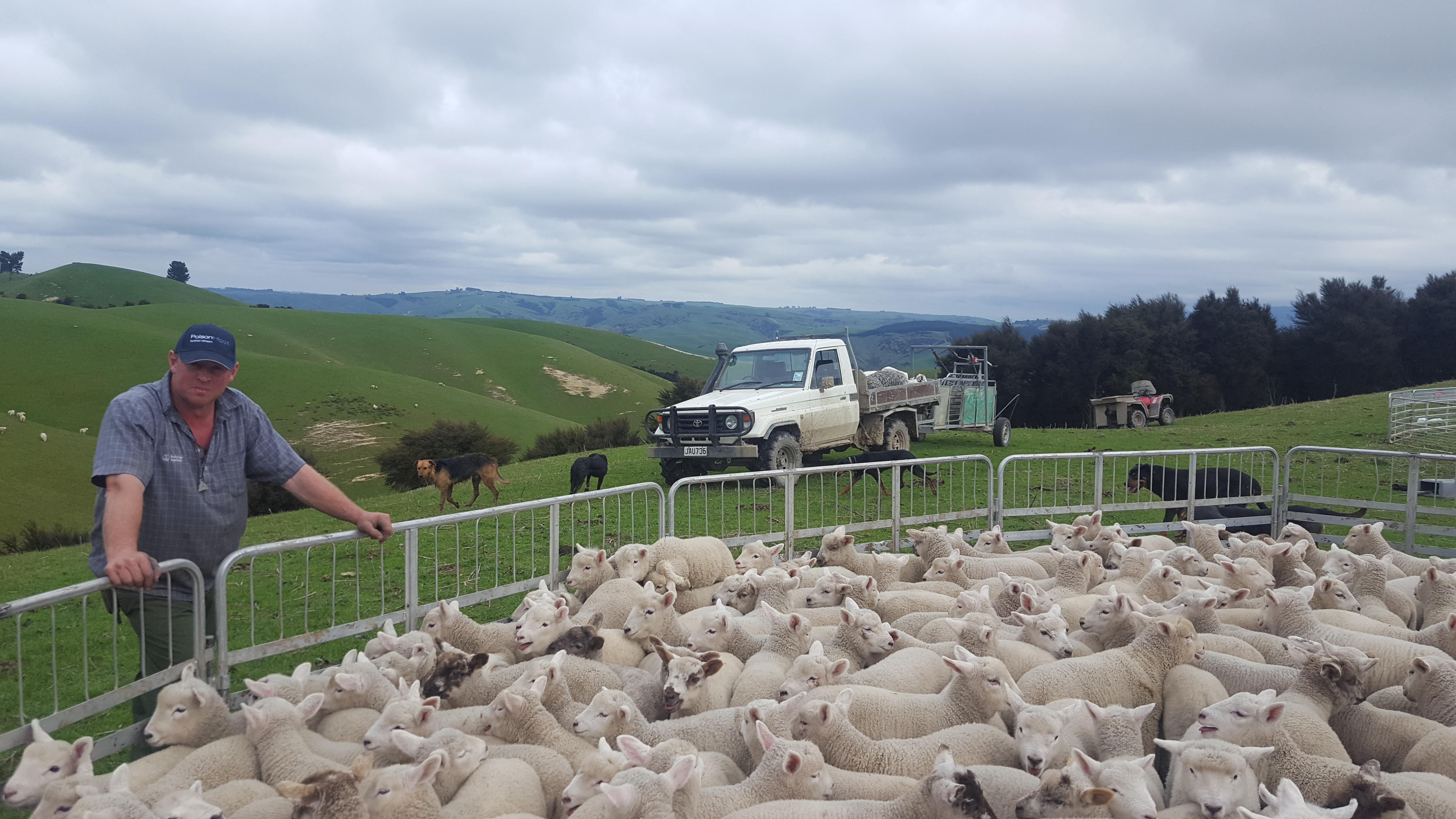 Planning for your future using Scenarios: Overhill Farm & Polson Higgs