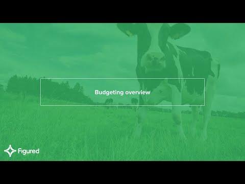 A look at budgeting