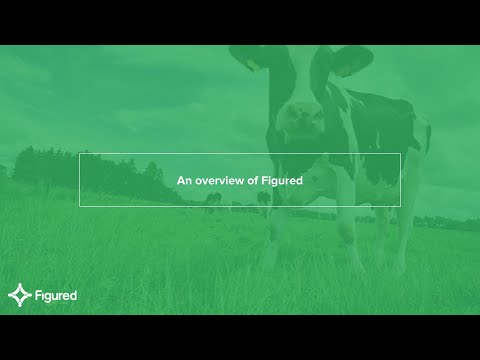 An overview of Figured