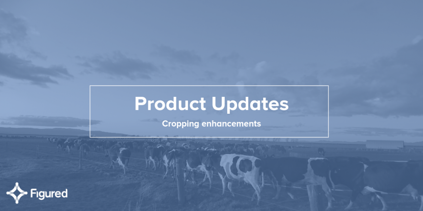 Product update: Cropping enhancements