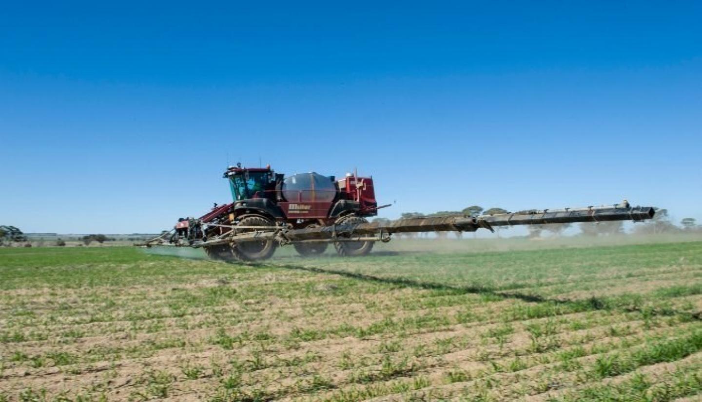 RSM Australia: A more hands-on approach to providing business advisory